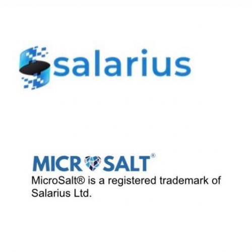 Tekcapital's Portfolio Company Was Granted a Trademark for its Salarius MicroSalt ®